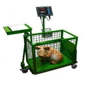 взвешивание свиньи на электронных весах