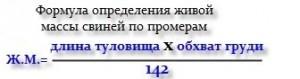 формула определения живой массы свиней по промерам