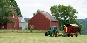 малая ферма